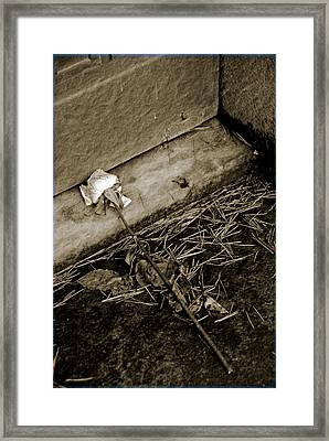 Faded Framed Print by Phil Bongiorno
