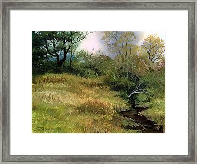 Fading Days Framed Print