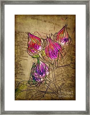 Faerie Caps Framed Print by Judi Bagwell