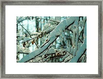 Faery Forest Framed Print by Rebecca Sherman