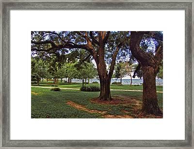 Fairhope Lower Park 2 Trees Framed Print by Michael Thomas