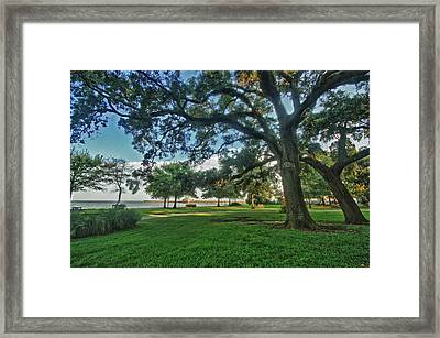 Fairhope Lower Park 4 Framed Print by Michael Thomas