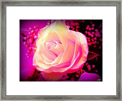 Fairy Rose Framed Print by Michelle Frizzell-Thompson