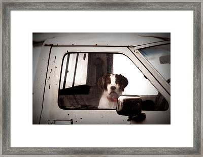 Faithful Framed Print by Cheryl Helms