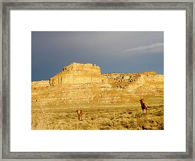 Fajada Butte At Sunset With Elk Framed Print