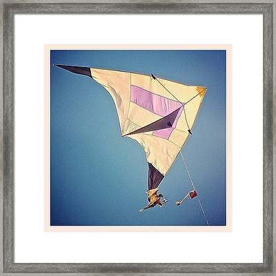 Falconry Framed Print