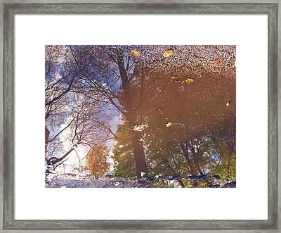 Fall Asphalt Framed Print