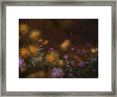 fall at Butchart Gardens Vancouver Island Framed Print by Jeff Burgess