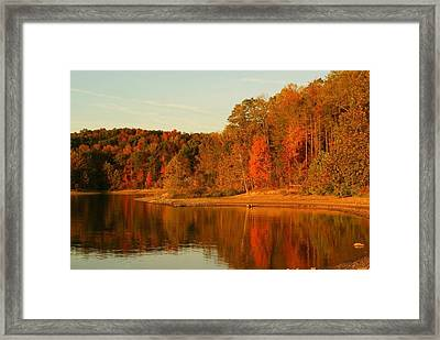 Fall At Patoka Framed Print by Brandi Allbright
