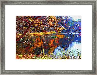 Fall At Surprise Lake Framed Print by Michael Dantuono