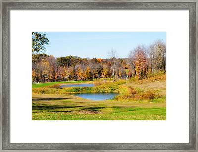 Fall At The Ponds Framed Print