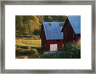 Fall Barns Framed Print