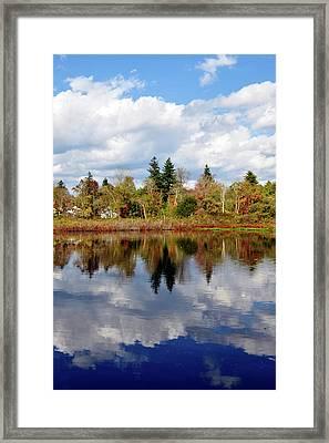 Fall Beginnings Framed Print