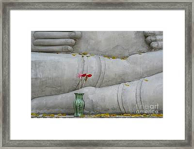 Framed Print featuring the photograph Fall Buddha #1 by Nola Lee Kelsey