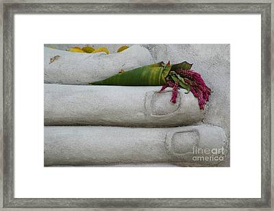 Framed Print featuring the photograph Fall Buddha #2 by Nola Lee Kelsey
