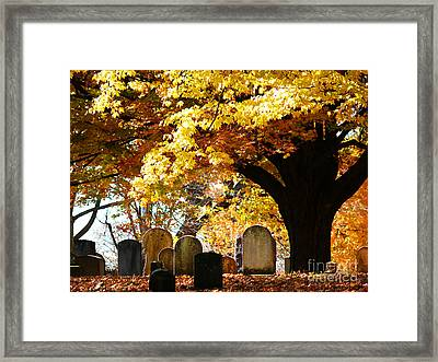 Framed Print featuring the photograph Fall Cemetery by Jeanne  Woods