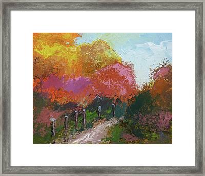 Fall Color Framed Print by Robert Bissett
