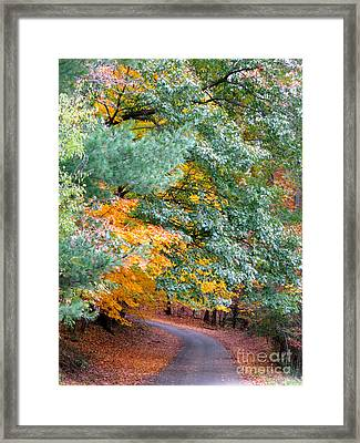 Framed Print featuring the photograph Fall Colored Country Road by Joan McArthur