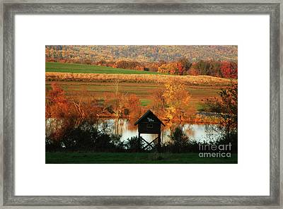 Framed Print featuring the photograph Fall Colors 1 by Vilas Malankar