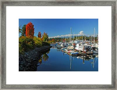 Fall Colors At English Bay Framed Print by Lynn Bauer
