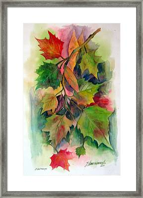 Fall Colors Framed Print by John Smeulders
