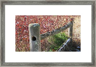 Fall Colors On The Fence Framed Print
