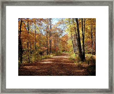 Framed Print featuring the photograph Fall Coming On by Paul Mashburn