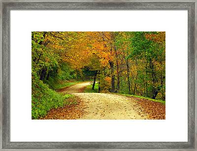 Fall Curves Framed Print by Susan Camden