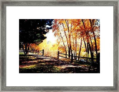 Fall Day Framed Print by David Alvarez