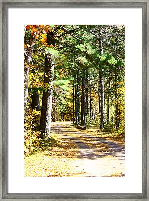 Fall Day To Remember Framed Print by Paula Brown