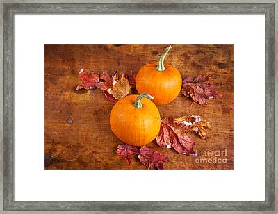 Framed Print featuring the photograph Fall Decorative Pumpkins by Verena Matthew