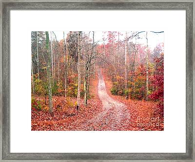 Framed Print featuring the photograph Fall Drive by Gretchen Allen