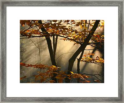 Fall Fantasy Framed Print by Claire Crocker