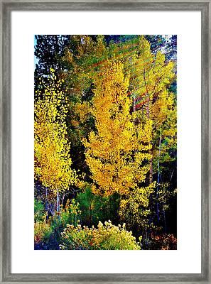 Fall Fantasy Framed Print by Ellen Heaverlo