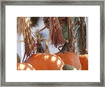 Fall Farm Stand Framed Print