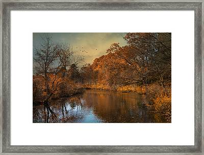 Fall Finale Framed Print by Robin-Lee Vieira