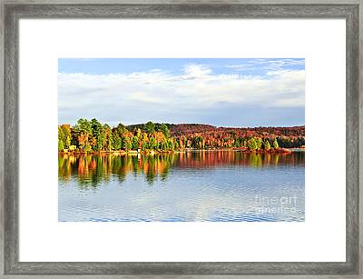 Fall Forest Reflections Framed Print