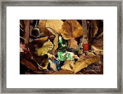 Fall From Grace Framed Print by Dean Harte