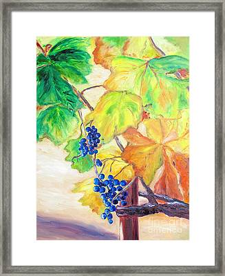 Fall Grapes Framed Print