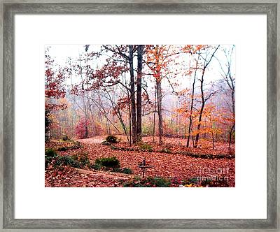 Framed Print featuring the photograph Fall by Gretchen Allen