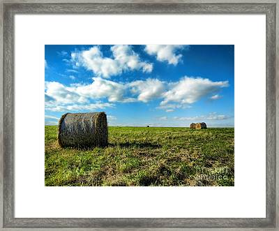Fall Harvest Framed Print by Mariola Bitner