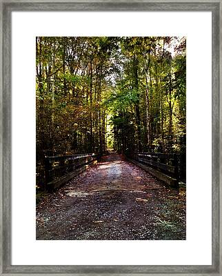 Fall Hiking Trail Framed Print by Janice Spivey