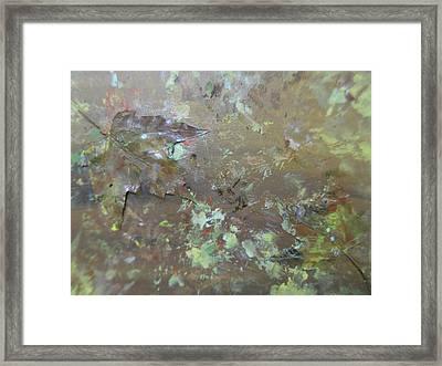 Fall Impressions Framed Print by Heather Burbridge