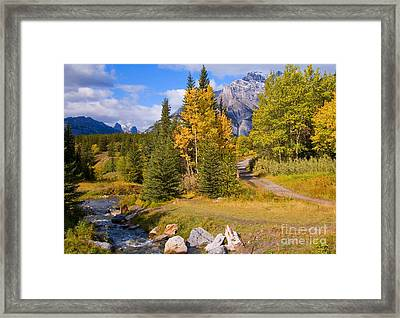 Fall In Banff National Park Framed Print by Bob and Nancy Kendrick