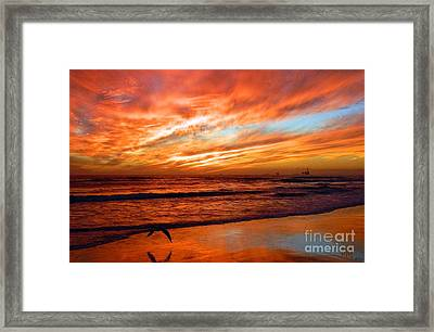 Fall In California Framed Print
