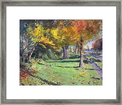 Fall In Goat Island Framed Print