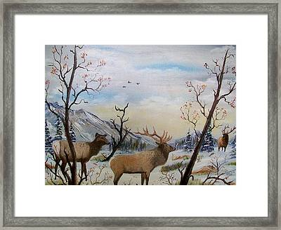 Fall In The Beartooth Mountains Framed Print