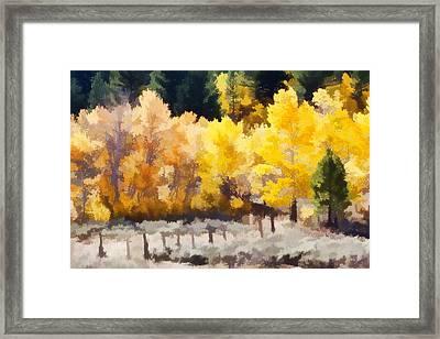 Fall In The Sierra Framed Print