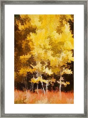 Fall In The Sierra II Framed Print by Carol Leigh