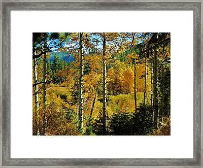 Fall In The Sierras Framed Print by Helen Carson